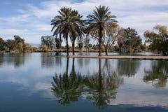 Fridsamt parkera vid en sjö fotografering för bildbyråer