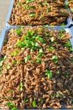 Fried Acheta-domesticus Grillen Lizenzfreie Stockfotografie