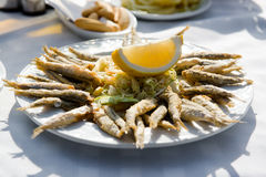 Fried anchovies Stock Image