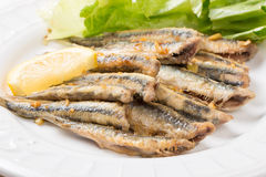 Fried anchovies with salad Royalty Free Stock Photos