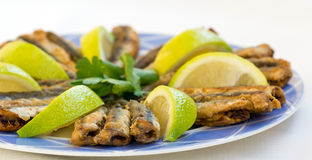 Fried anchovies with slice of lemon and parsley Royalty Free Stock Photography