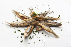 Fried anchovies Stock Photography