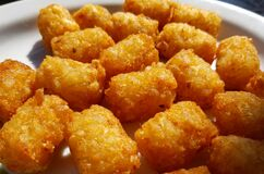 Free Fried And Crispy Tator Tots On A White Plate Royalty Free Stock Images - 181982949