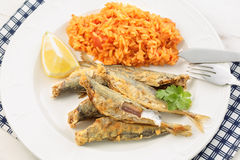 Fried Atlantic horse mackerel with tomato rice Stock Photography