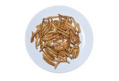 Fried bamboo larvae in White background Royalty Free Stock Image
