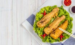 Fried bamboo shoots Stock Image