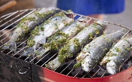 Fried barbecue grill trout Royalty Free Stock Images