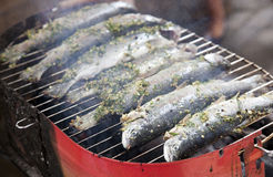 Fried barbecue grill trout Royalty Free Stock Photos
