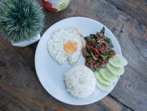 Fried basil beef with fried egg and rice. Top view of fried basil beef with fried egg and rice Royalty Free Stock Photos