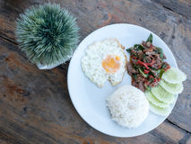 Fried basil beef with fried egg and rice. Top view of fried basil beef with fried egg and rice Royalty Free Stock Photo