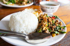 Fried basil leave with chicken on rice. Stock Photo