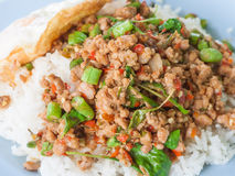 Fried basil leave with pork, pad krapow moo Royalty Free Stock Photos