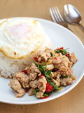 Fried basil leave with pork , thaifood Stock Photography