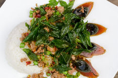 Fried basil with pork and preserved egg. Thailand call pad ka pow Royalty Free Stock Photography