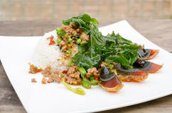 Fried basil with pork and preserved egg. Thailand call pad ka pow Royalty Free Stock Image