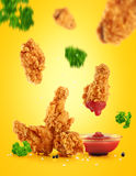 Fried in batter chicken wings and ketchup. Royalty Free Stock Photo