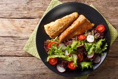 Fried in a battered hake and fresh salad close-up. Horizontal to. Fried in a battered hake and fresh salad on a plate close-up. horizontal top view from above Royalty Free Stock Images