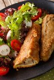 Fried in a battered hake and fresh salad close-up. vertical. Fried in a battered hake and fresh salad on a plate close-up. vertical Royalty Free Stock Images