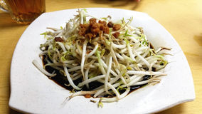 Fried Bean Sprout, Tauge Lizenzfreies Stockbild