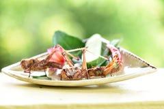 Fried Bombay Locust (succincta Linn di Patanga ) Fotografie Stock