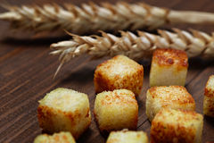 Fried bread cut into cubes  cooking. Stock Photography