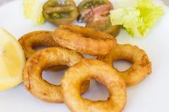 Fried Breaded Calamari med sallad Royaltyfria Bilder