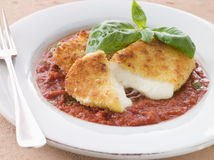 Fried Breaded Mozzarella Cheese with Tomato Ragu Royalty Free Stock Photo