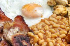 Fried Breakfast. With bacon, beans, tomatoes, egg and mushroom. Typically English royalty free stock photo