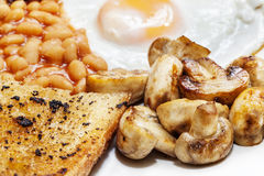Fried Breakfast. With bacon, beans, tomatoes, egg and mushroom. Typically English royalty free stock photos