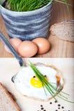 Fried Breakfast Egg på silverspateln, med persilja, bröd som är salt, peppar royaltyfri fotografi