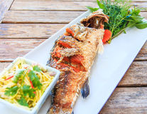 Fried Brown-marbled grouper fish Stock Photography