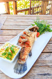 Fried Brown-marbled grouper fish Stock Image