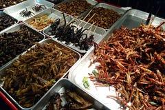 Fried Bugs foto de archivo