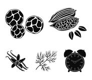 Fried cacao beans, dill, black pepper, vanilla.Herbs and spices set collection icons in black style vector symbol stock. Illustration Stock Photo