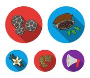 Fried cacao beans, dill, black pepper, vanilla.Herbs and spices set collection icons in flat style vector symbol stock. Illustration Stock Photo