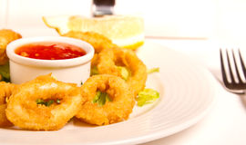 Fried calamari. With hot salsa dip stock image