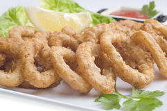 Fried calamari close up Royalty Free Stock Image