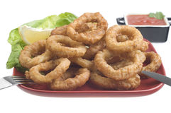 Fried calamari close up Royalty Free Stock Photography