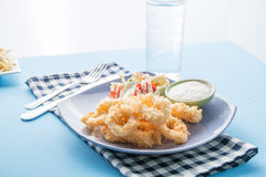 Fried calamari, Fried Squid. Fried calamari or Fried Squid with salad Stock Images