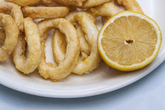 Fried calamari. Image of Fried calamari dish Stock Image