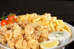 Fried calamari and pommes frittes Royalty Free Stock Photos