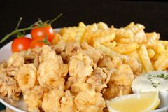 Fried calamari and pommes frittes Royalty Free Stock Image