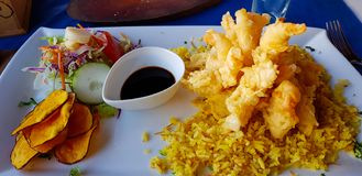 Fried calamari, Easter Island, Chile stock photography