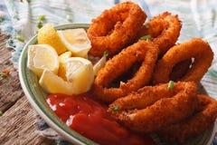 Fried calamari rings close up with ketchup and lemon. Horizontal Royalty Free Stock Photos