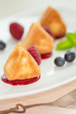 Fried camembert cheese with raspberry coulis and fresh berry for Royalty Free Stock Photo