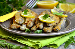 Fried capelin with lemon and herbs. Stock Photos