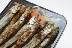 Fried Capelin Royalty Free Stock Photo