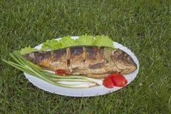 Fried carp laced with lemon. Stock Image