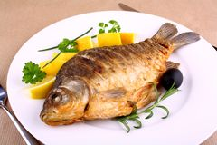 Fried carp on white plate with knife and fork Royalty Free Stock Images