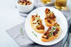 Fried chantarelle onion toasts Royalty Free Stock Image